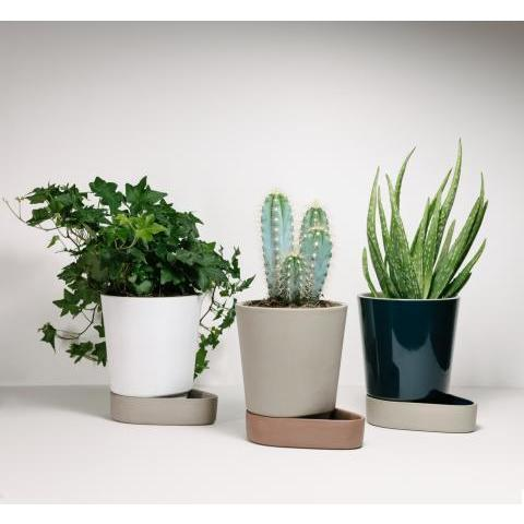 Sip Plant Pot | Modern & Contemporary Planters | Case Furniture