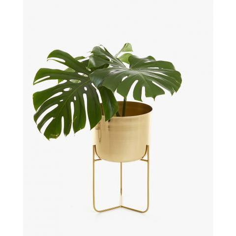 POT FER DORÉ - MEUBLES - DÉCORATION | Zara Home France