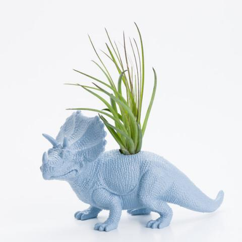 Dinosaur Planter with Air Plant Room Decor College par boygirltees