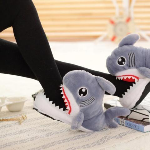Chaussons requins | Greenpills