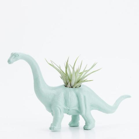 Small Dinosaur Planter with Air Plant Room Decor par boygirltees